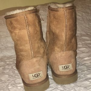 Shoes - Uggs